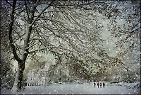 Walkers in a snowy park