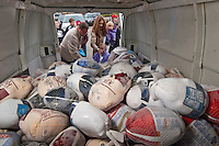 A family adds their selection of frozen turkeys to the stack of almost 300 birds collected Sunday at. St. Paul's Catholic church in Westerville. The annual  November collection donations are destined for Holy Rosary-St. John parish in downtown Columbus for its food kitchen.