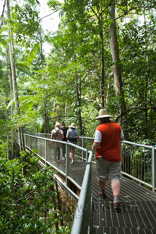 Tourists on aerial walkway at the Daintree Rainforest Discovery Centre.  Daintree National Park, Queensland, Australia