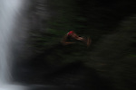A Filipino man dives into the bottom of a waterfall in Ilocos Norte, Philippines..**For more information contact Kevin German at kevin@kevingerman.com