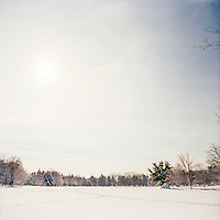 Brookdale Park Snow