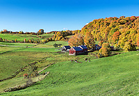 Colorful autumn farm, Reading, Vermont, USA