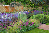 Astrantia, ornamental grasses, irises, in gorgeous garden with lawn, wall, hedge, lush variety of plants