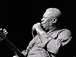B.B. King performs at the African American Heritage Festival in Baltimore, MD on Saturday, August 11, 2007.