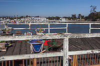 Monday August 24, 2015, John Watson begins removing plants and decorations from his ad-hoc garden on a closed observation deck at the San Leandro Marina on California's San Francisco Bay.