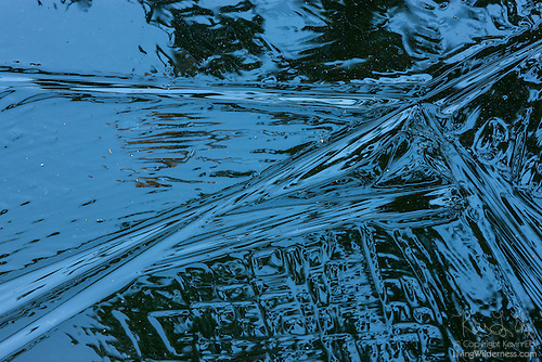 Ice Texture, Frozen Pond, Snohomish County, Washington