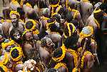 Parade of naga sadhus wearing marigolds, Varanasi, India
