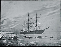 BNPS.co.uk (01202 558833)<br /> Pic: PenzanceAuctions/BNPS<br /> <br /> Dog sleds on the ice.<br /> <br /> Incredibly rare glass slides depicting the British expedition to the North Pole in 1875 have been found 140 years later.<br /> <br /> The remarkable images from the early days of photography depict the brave men and their Inuit guides who endured sub-zero temperatures to try to become the first to reach the pole in 1875.<br /> <br /> Photographers Thomas Mitchell and George White went on the failed expedition and now 42 of their glass slides have been found in a box during a house clearance in Cornwall.