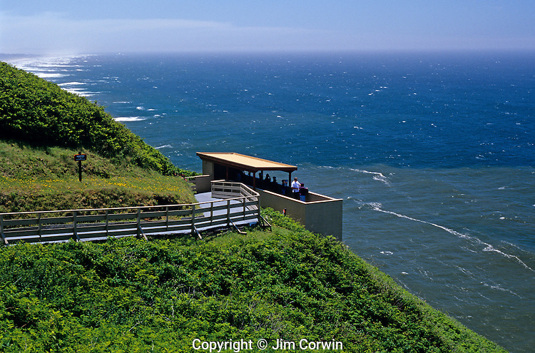 Sea lion caves outdoor observation deck looking over coastline down to where the sea lions are sunbathing on rocks highway 101 along the Oregon State Coastline USA.