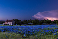 We capture this lightning strike from this storm cloud as we were out taking photos of the bluebonnets at this old farm house in the Texas Hill country. After the sun went down we noticed some lightning in a storm cloud so we hung around to try to capture this image.   We were delighted that we were able to capture it using a little light painting to keep the bluebonnets in the scene.