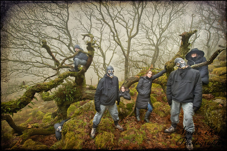 Clones in Wistman's Wood, Dartmoor