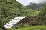 French Polynesia Tahiti EDT Papenoo