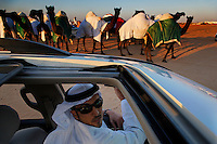 The Mohamed Khamisicovered their camels in colorful coats and took them through the desert parading them for all to see.  Family members drove honking their horns to attract attention.  Music blared from speakers to draw attention and add to the festivities.