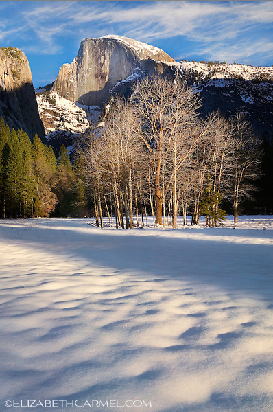 Winter Evening, Yosemite