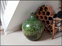 BNPS.co.uk (01202 558833).Pic: Phil Yeomans/BNPS..Eco-message in a bottle.....The plant in its favoured spot under the stairs...Amateur gardener David Latimer from Cranleigh in Surrey has astonished experts on the long running BBC radio show Gardeners Question Time by showing them his 52 year old 'bottle garden' - that has been sealed by a cork without water since 1972 and amazingly still seems to be thriving...David carefully planted a Tradescanthia plant in a 10 gallon 'carboy' Sulphuric acid jar in 1960 as an experiment, topping it up with 1/4 pint of water through the sixties the bung was finally put in for good in 1972.. .Since then the bottle has been almost forgotten under the stairs apart from one precarious trip down the M6 when the couple retired to Surrey...Expert Chris Beardshaw described the strange survivor as the 'wonderful example of a perfect cycle of life' ..