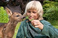 Rehkitz, Reh-Kitz, verwaistes, pflegebedürftiges Jungtier wird in menschlicher Obhut großgezogen, Kind, Junge liegt im Garten auf einer Decke und füttert Kitz mit Löwenzahn-Blatt, Tierkind, Tierbaby, Tierbabies, Europäisches Reh, Ricke, Weibchen, Capreolus capreolus, Roe Deer, Chevreuil