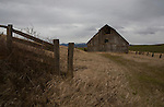 Idaho, North, Latah County, Moscow. A rustic barn in late winter on a cloudy afternoon.
