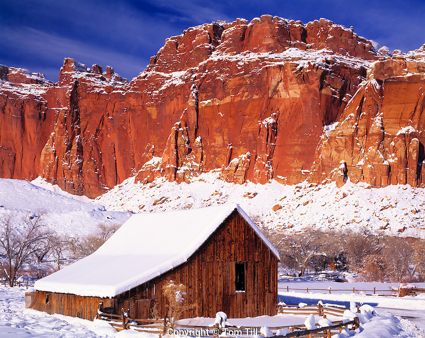 Fruita Barn in Heavy Snow, Capital Reef National Park, Utah