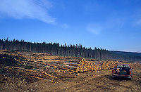 Pick up truck next to piles of cut logs in a forest, Gaspé Peninsula, Canada.
