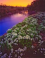 Along the Jordan River      Salt Lake City valley, Utah   Wasatch Front    Jordan River Parkway