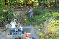 NWA Democrat-Gazette/FLIP PUTTHOFF <br /> Kevin Hopkins (left) and Jon Stein, fisheries biologists with the Arkansas Game and Fish Commission, load cedar trees cut from Deer Island. Cedars from Deer and Bear islands are being removed to improve the forest and to create fish habitat at Beaver Lake.