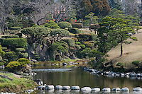 Ancient manicured Buxus Sempervirens grow on the banks of the lake of the Suizen-ji water garden