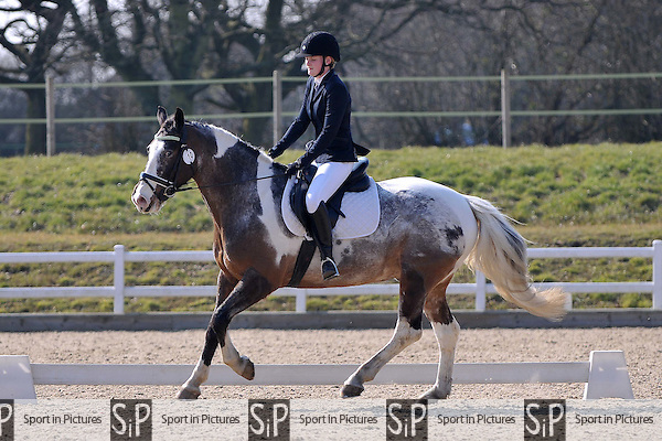 Class 4. Unaffiliated Dressage. Brook Farm Training Centre. Essex. 17/03/2016. MANDATORY Credit Garry Bowden/Sportinpictures - NO UNAUTHORISED USE - 07837 394578