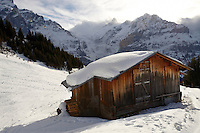 Swiss chalets on the alpine slopes under winter snow near Bort - Grindelwald, Swiss Alps, Switzerland
