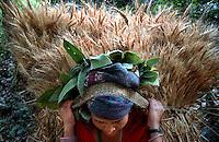 Nepal Maoist Revolution