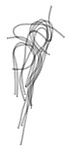 X-ray image of spaghetti strands (black on white) by Jim Wehtje, specialist in x-ray art and design images.