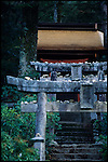 Temple in the forest, Mijajima island, Japan / temple dans la forêt, ile de Miyajima, Japon