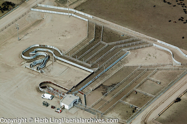 aerial photograph cattle corral at feedlot Nebraska