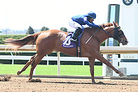 LEXINGTON, KY - APRIL 07: Fairyland wins a maiden special weight for 2-year-olds for owners Mrs. John Magnier, Michael Tabor and Derrick Smith, trainer Wesley Ward and jockey Julio Garcia.  April 07, 2017