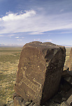 Three Rivers Petroglyph Site, near Tularosa, New Mexico, USA, an outstanding example of prehistoric Native American Indian rock art, carved with stone tools by the Jornada Mogollon people in approximately 900 AD.