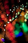"At a holiday light display (Brookside Gardens Garden of Light in Wheaton, Maryland), patterns of light are created through purposeful ""de-focus."""