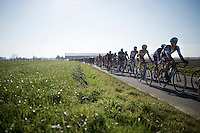 peloton with 45 km's to go<br /> <br /> 3 Days of West-Flanders 2015<br /> stage 2: Nieuwpoort - Ichtegem 184km