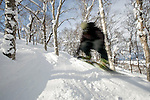 Boarders and skiers dodge the trees along the off-piste runs at  Hanazono ski ground in Niseko, northern Japan on Feb. 6 2010. Niseko, whose annual snowfall is around 15 meters, is the only ski resort area in Japan where off-piste skiing can be legally enjoyed.