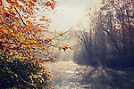 Rising morning fog and sunrise on river Wupper in autumn.<br />