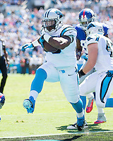 The Carolina Panthers played the New York Giants at Bank of America Stadium in Charlotte, NC.  The Panthers won 38-0 for their first victory of the season.  The Giants dropped to 0-3.  Carolina Panthers fullback Mike Tolbert (35) celebrates his touchdown run