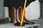 Colorful Boot Covers of the Swiss Guard, side view
