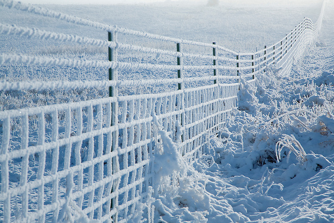 Hoarfrost covers a wire fence in a winter scene in Montana