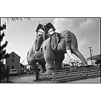 Lucy the Elephant, Margate, NJ