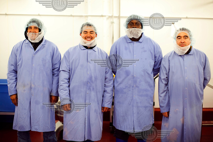A working team, dressed in food hygiene workwear, at Greencore's Cincinnati facility. Greencore Group is an Irish-based company that produces convenience foods and sandwiches throughout Britain and Europe. In 2008 Greencore acquired Home Made Brand Foods in Newburyport, Massachusetts to establish Greencore North America.
