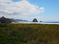 Dune grasses stretch along the shore of the Pacific Ocean with the Haystack in the distance, Cannon Beach, Oregon USA - June 5, 2007