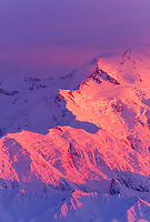 20, 3020+ ft. Mt. McKinley (locally called Denali) Alpenglow on Pioneer ridge of Denali's north face, Denali National Park, Alaska