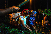 Workers at the Makaibari Tea Plantation pick tea leaves on a full moon night at the tea gardens in Makabari, Kurseong, Darjeeling. Silver Tips Imperial sold for $1,850 per kilo at a tea auction in Calcutta, India.