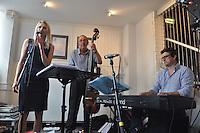 Fleur Stevenson, Nick Hill (b), Maff Potts (kb). Bunkfest 2014. Wallingford. 30.08.2014