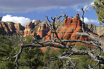 USA, Arizona, Sedona. Scenic Red Rock formations of Sedona, Arizona.
