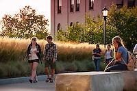 20100906 Tall Grass Garden at the Davis Center