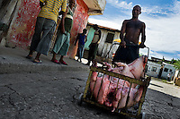 A Cuban man pushes a cart loaded with the body of a dead pig during the hog killing time in Santiago de Cuba, Cuba, 3 August 2008. About 50 years after the national rebellion, led by Fidel Castro, and adopting the communist ideology shortly after the victory, the Caribbean island of Cuba is the only country in Americas having the communist political system. Although the Cuban state-controlled economy has never been developed enough to allow Cubans living in social conditions similar to the US or to Europe, mostly middle-age and older Cubans still support the Castro Brothers' regime and the idea of the Cuban Revolution. Since the 1990s Cuba struggles with chronic economic crisis and mainly young Cubans call for the economic changes.